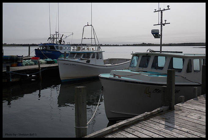 Three lobster fishing boats docked in port outside Halifax, Nova Scotia, Canada - Photo by Web Developer Sheldon Ball